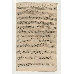 Violino I (Schreiber: Anon. Iq)