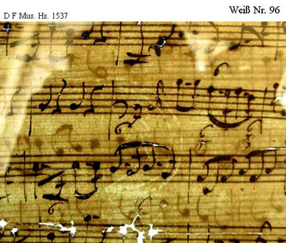 Bach digital: Weiß 96