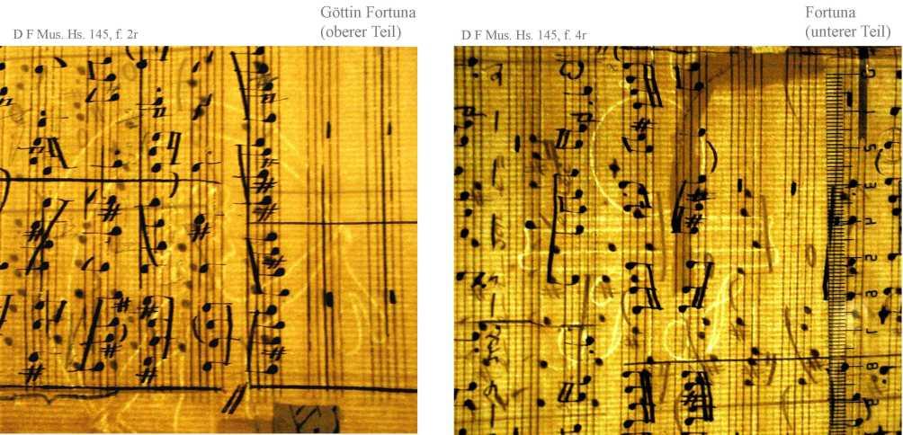 Bach digital: Fortuna 8