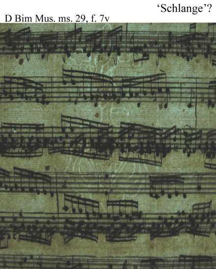 Bach digital: Schlange 1