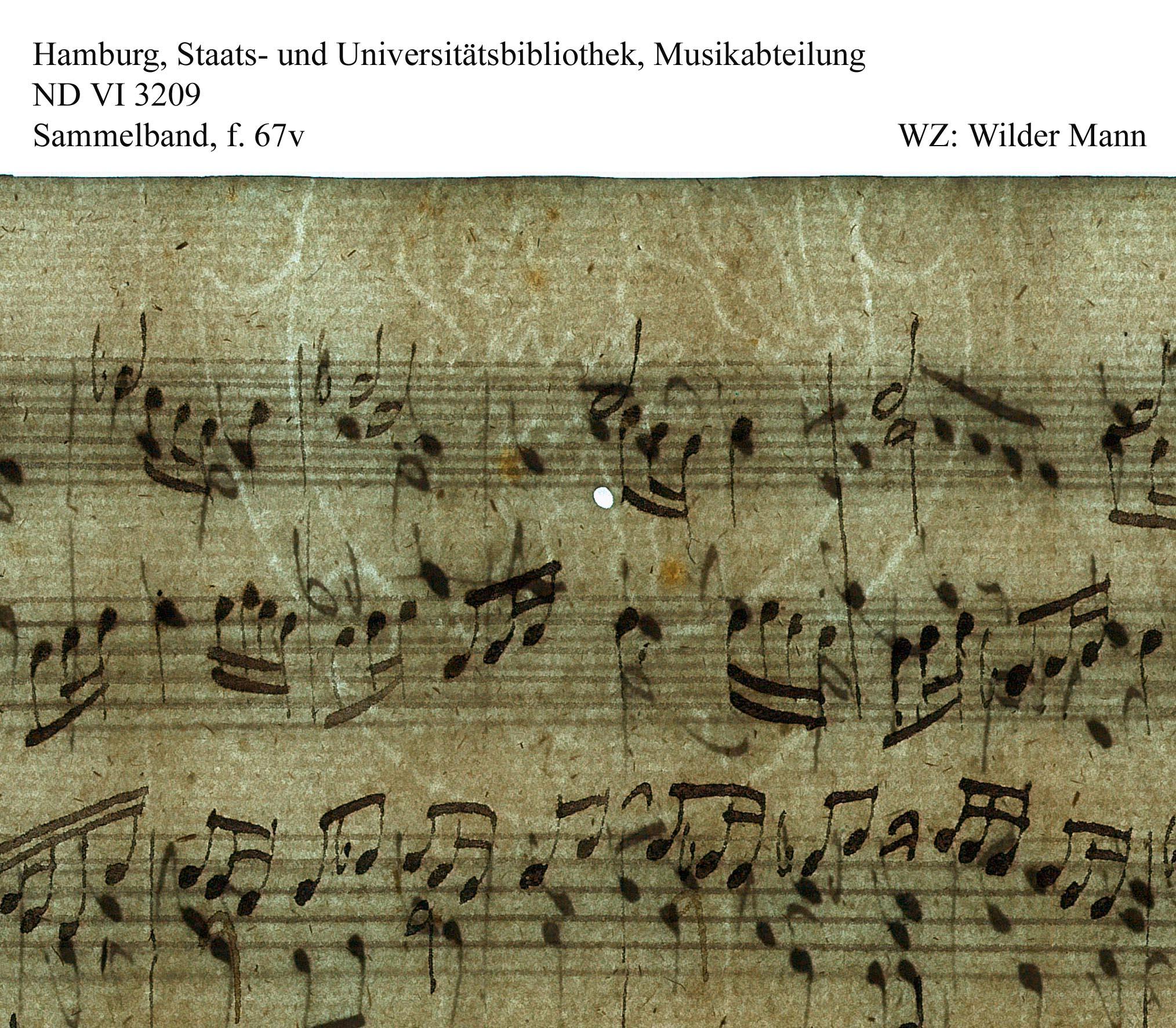 Bach digital: Wilder Mann dhs13